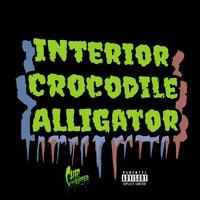 Interior Crocodile Alligator TikTok