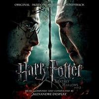 Harry Potter Theme Song TikTok