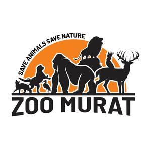 @zoomurat